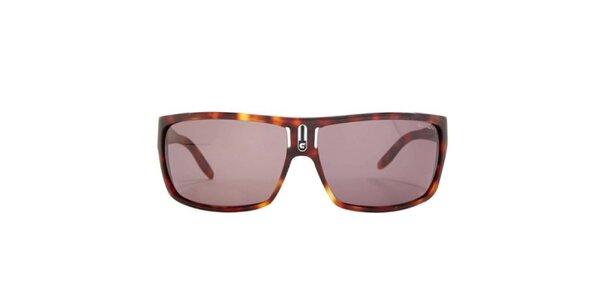 Pánske hnedo žíhané slnečné okuliare Carrera