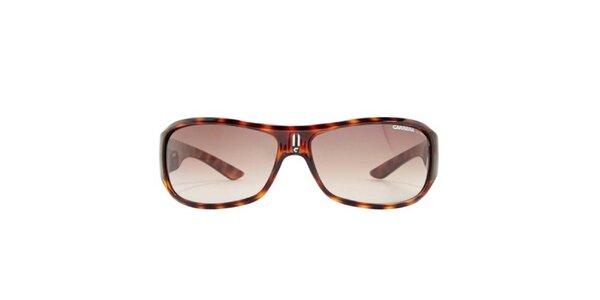Pánske zaoblené hnedo žíhané slnečné okuliare Carrera