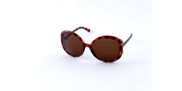 Dámske korytnačie slnečné okuliare Guess