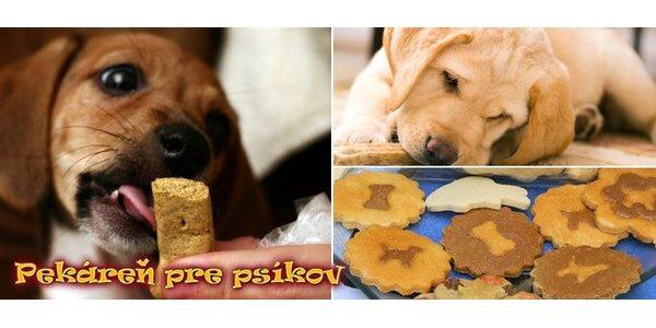 1 Euro za keksíky pre Vášho štvornohého miláčika z Pekárne pre psíkov!