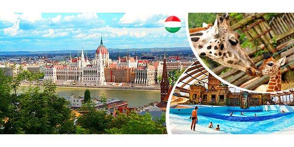 Zážitkový výlet do Budapešti - ZOO, Aqupark