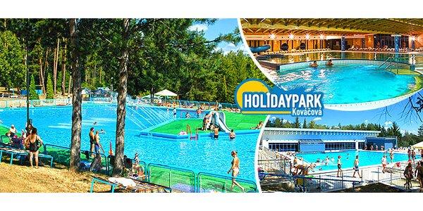 Celodenný vstup do Aquaparku Holidaypark