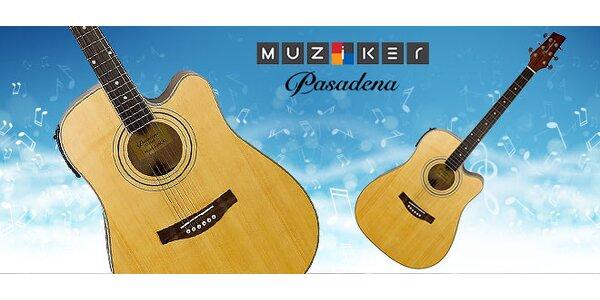 Elektroakustická gitara Pasadena