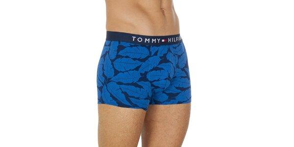 Pánske modré boxerky s pierkami Tommy Hilfiger