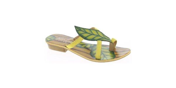 Dámske kožené žlté remienkové sandále s listom Andrea Conti