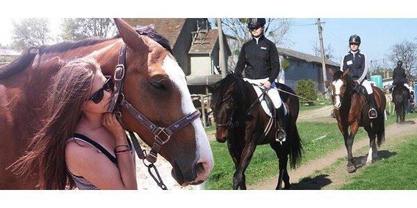 Kurz jazdenia na koni