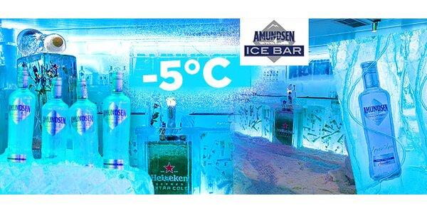 Vstup, ice shot a SÚŤAŽ o párty v Ice Bare