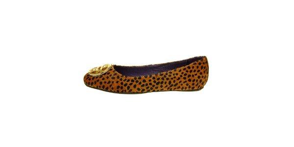 Dámske hnedé leopardie baleríny Hope so zlatou sponou