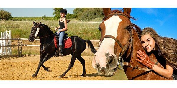 Vychádzková jazda na koni (1,5 hod.)