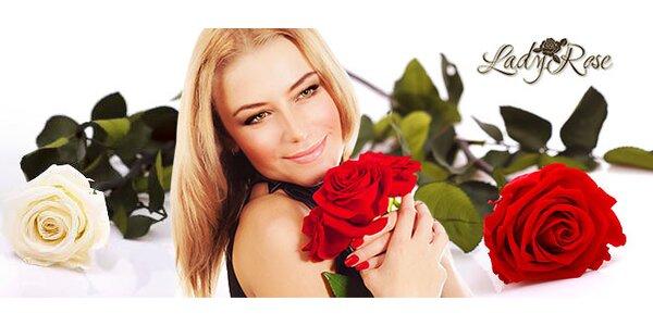 """Stabilizované """"večné"""" ruže, ktoré nevädnú"""