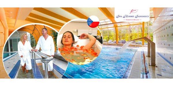 Wellness dovolenka v Karlových Varoch