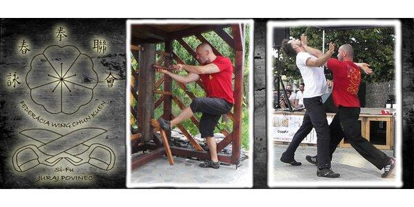 Mesačný kurz bojového umenia WING CHUN
