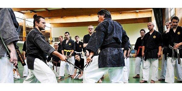 Bojové umenia – 1 alebo 3 mesačný tréning