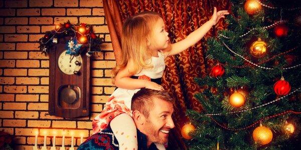 Vianočná jedlička či borovica i so stojanom