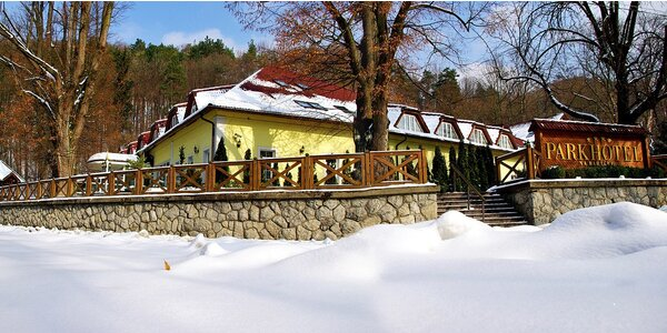 Zimný luxusný wellness pobyt - Trenčianske Teplice