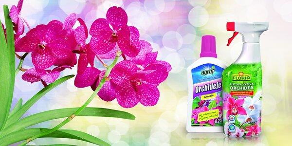 Starostlivosť o orchidey (hnojivo a listová výživa)