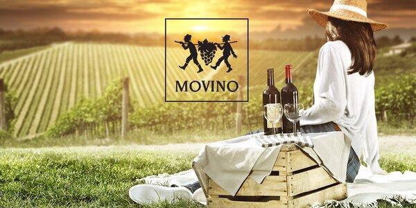 VIP vínny pas na 5. ročník Dni vína MOVINO