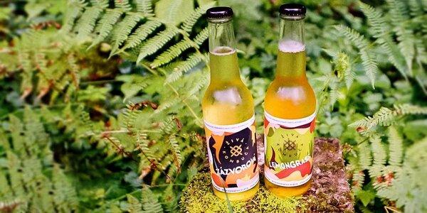 Detox organizmu so živou kombučou so zázvorom a s citrónovou trávou