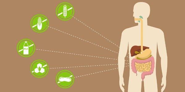 Biorezonančné testovanie potravinových intolerancií, záťaží v organizme a stavu…