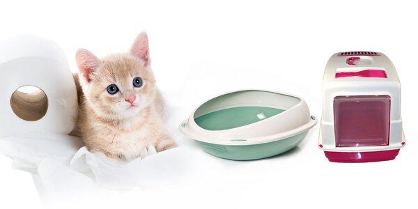 Toaleta pre mačky
