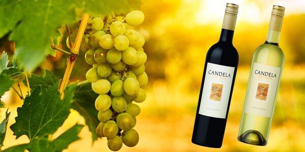 6 chutných vín z Argentíny