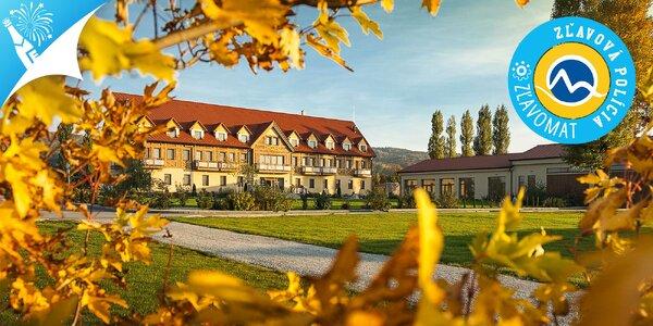 Silvestrovský pobyt v Hoteli Malvázia**** s wellness a masážou