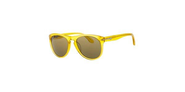 Pánske jantarové slnečné okuliare Calvin Klein s tmavými sklami