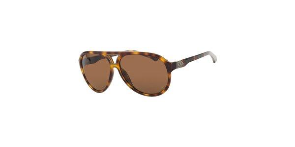 Pánske jantarové žíhané slnečné okuliare Calvin Klein s hnedými sklami