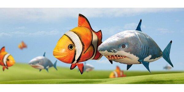 65,90 eur za hi-tech lietajúcu rybu, ocenenú titulom Hračka roka 2011, so…