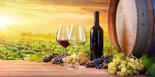 Ochutnávky juhoamerických, rakúskych a slovenských vín