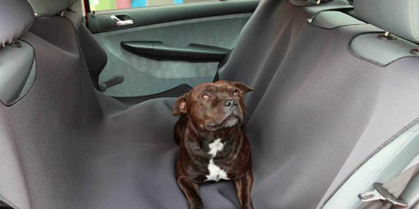 Autodeka na zadné sedadlá pre psov i mačky