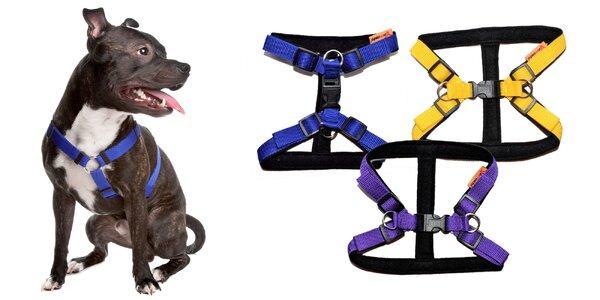 Nylónové postroje pre psíkov: 7 farieb na výber