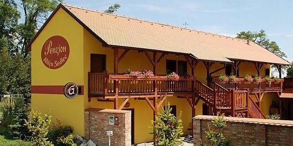 Odpočinok na južnej Morave s raňajkami a vínom