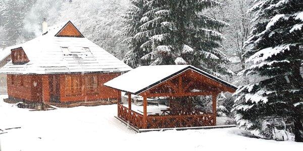 Oddych počas zimy v krásnej chate neďaleko Donovalov