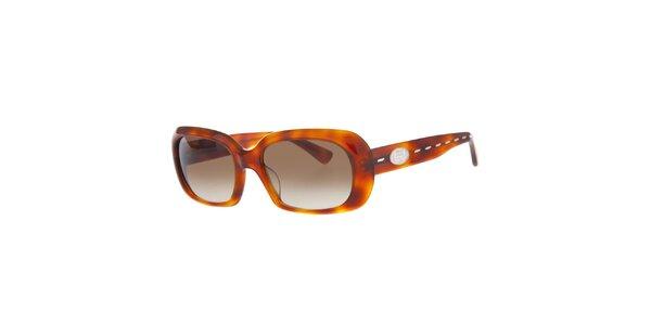 Dámske jantarové slnečné okuliare Fendi