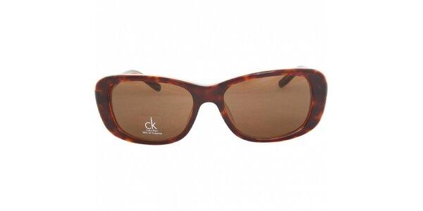 Dámske hnedé žíhané slnečné okuliare Calvin Klein