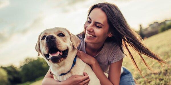 Pomôžte psíkom bez domova!