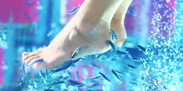 Pedikúra rybičkami Garra rufa + možnosť wellness