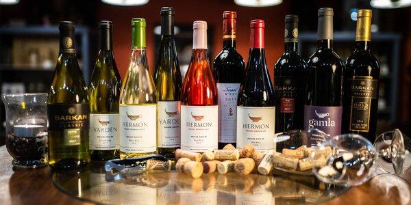 Riadená degustácia 10 izraelských vín v Art Vínotéke