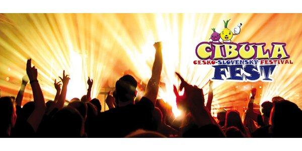 Vstup na festival Cibula fest 2013