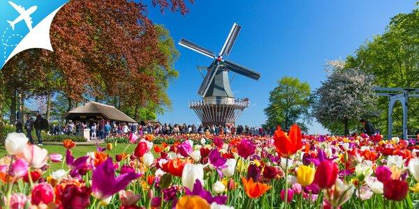 Perly Holandska počas 4-dňového zájazdu: letenky a ubytovanie v cene