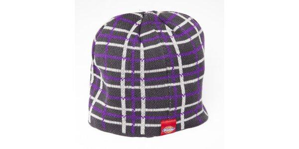 Pánska sivá beanie čiapka Dickies s fialovo-bielymi pruhmi