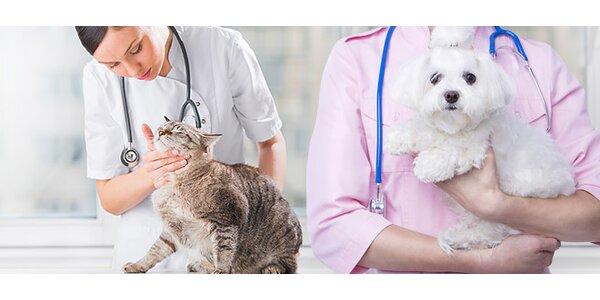 Začipovanie domácich zvierat priamo u vás