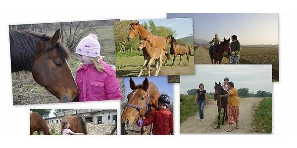 Poďte s deťmi na koni do prírody !