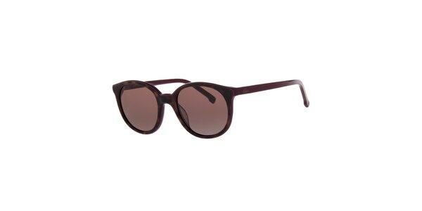 Dámske fialovo-hnedé slnečné okuliare Lacoste