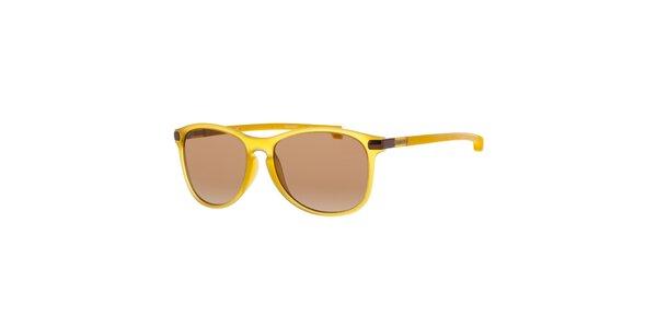 Žlté pánske slnečné okuliare Lacoste
