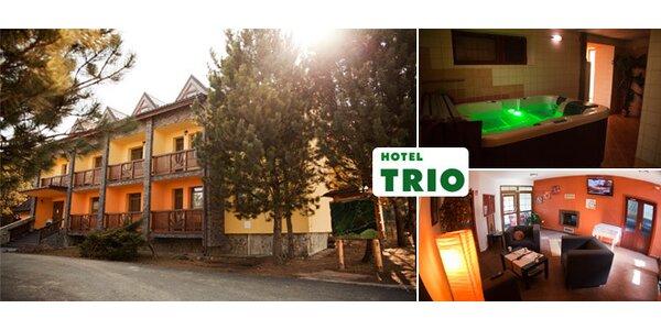 Wellness pobyt pre dvoch v Hoteli TRIO