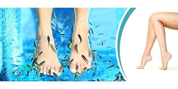 Pedikúra alebo kúpeľ rybičkami Garra Rufa
