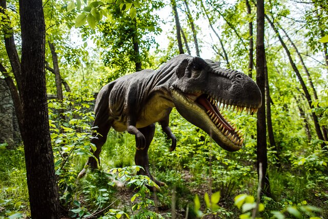 Dino Park Budakeszi