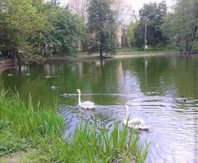 Barčiansky park